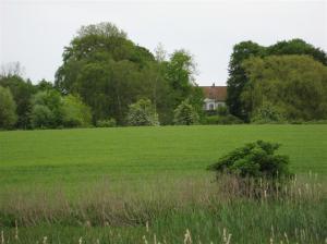 hus i det gröna
