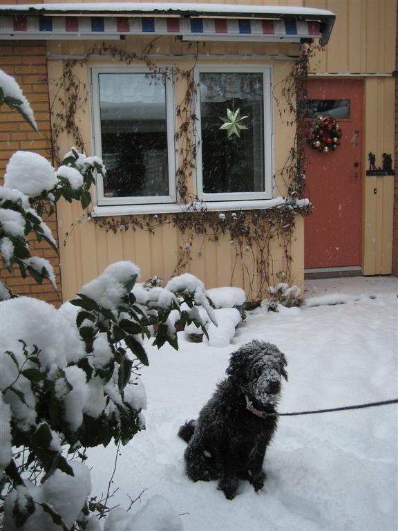 God Jul I Kvarnby