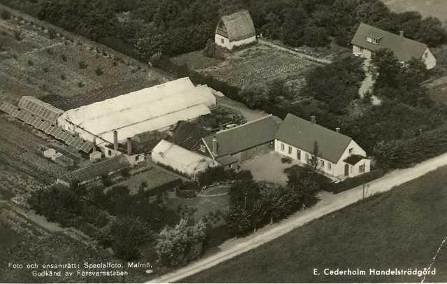 Cederholms_handelsträdgård.jpg